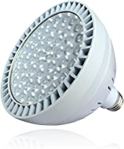 TOVEENEN LED Pool Light 60W 5400lm High Brightness White Light 6500K Replacement for 500W Incandescent Bulbs in Pool Light (120V,60W)