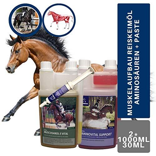 EMMA®Aminosäure & Vitamin E & Reiskeimöl für Pferde Sparset I Aminosäure & Gamma-Oryzanol I unterstützt den Muskelaufbau I Top Senioren Futter 3 teilig