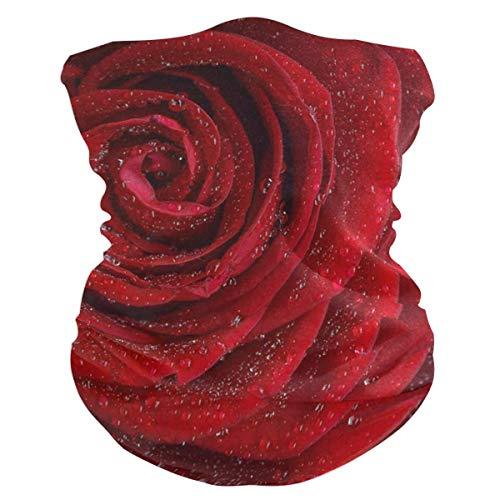 Trista Bauer Pasamontañas Los muchos significados de diferentes colores Diadema de rosas Bandana para mujer Pasamontañas para hombre multifuncional, Calentador de cuello, Mascarilla