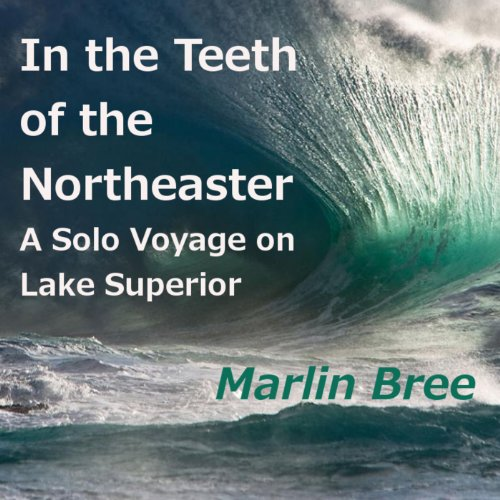 In the Teeth of the Northeaster audiobook cover art