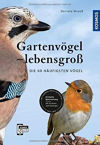 Gartenvögel lebensgroß: Die 60 häufigsten Vögel, Einfache Bestimmung, Mit 60 Rufen und Gesängen: Die 60 hufigsten Vgel, Einfache Bestimmung, Mit 60 Rufen und Gesngen