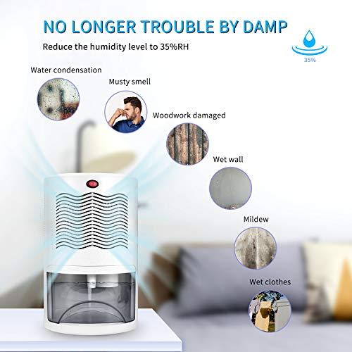 Product Image 2: Letsport Dehumidifier