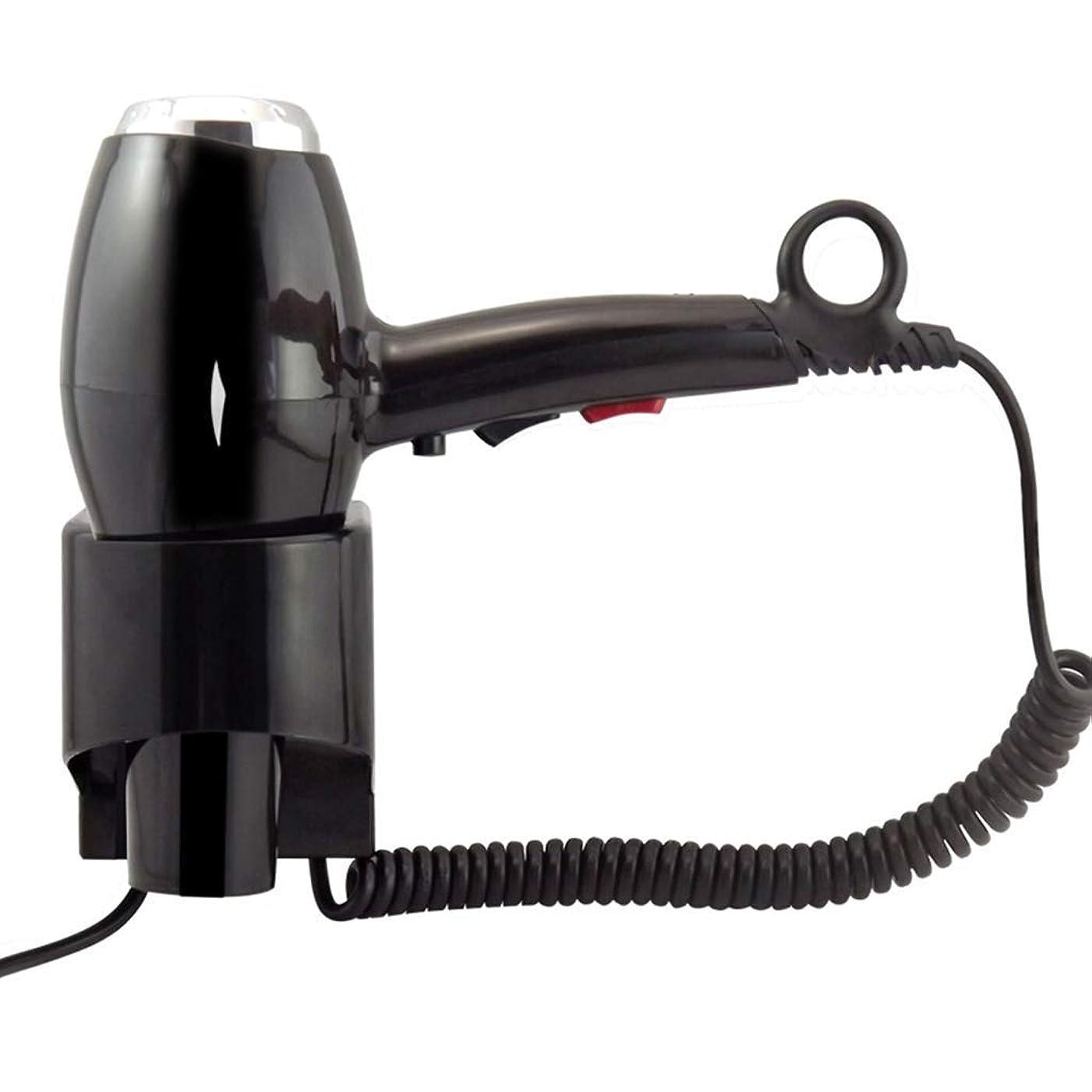 RUIMA ぶら下げヘアドライヤーバスルームホームハイパワー外部ヘアドライヤー (Color : Black)