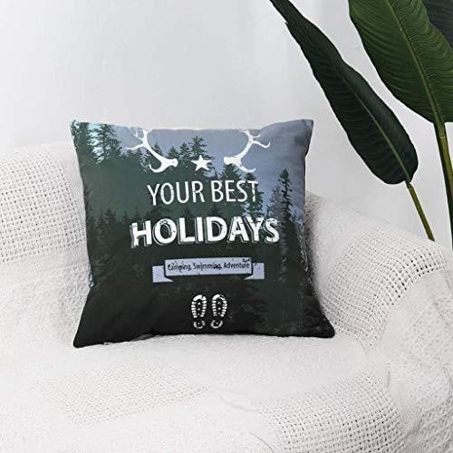 Hoofdkussen Velvet Soft decoratieve Plein Sierkussen Cover kussenhoezen kussensloop, Woondecoraties Decorations for Sofa Couch Bed Stoel (Kleur: D, Maat: 45x45cm) (Color : B, Size : 45x45cm)