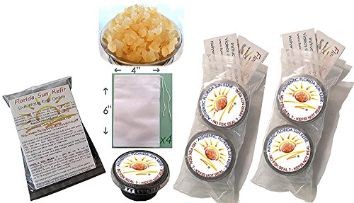 1 Cup Original Water Kefir Grains Exclusively from Florida Sun Kefir with 4 Brewing Bags