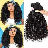 EMOL Hair 8A Brasilianisches Haar Brazilian Curly Hair Bundles Menschliches Haar Virgin Human Hair Curly Weave 3 Bundles 12 14 16 Zoll Total 300g Natural Color