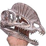 erddcbb Modelo de cráneo fósil Dinosaurio Dilophosaurus réplica de cráneo Modelo de Esqueleto Figura Adorno de Acuario decoración del hogar