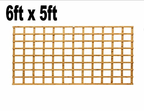 6ft x 5ft Garden Trellis Heavy Duty Treated Screen Square Pressure Treated Autumn Gold