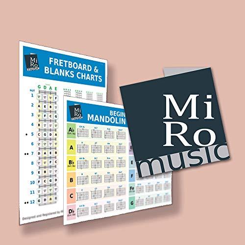A5 Mandolin chord Card, Beginner to advanced, 48 chords inc major, minor, 7th, Double Sided,