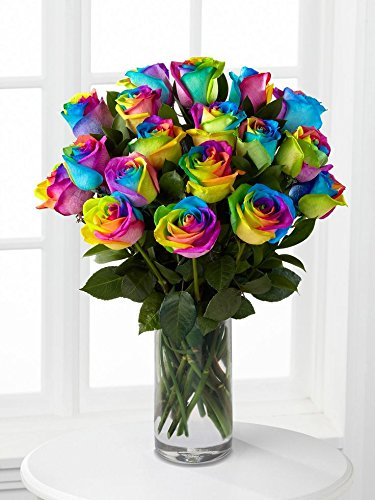 Farm Direct Fresh Rainbow Roses | Tinted Flower Bouquet of...