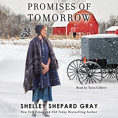 Promises of Tomorrow audiobook cover art
