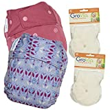 GroVia Experience Package: 2 Shells + 4 No Prep Soaker Pads (Color Mix 5 Snap)
