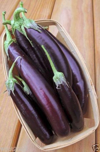Eggplant,organic,purple Long Eggplant, Italian Heirloom~ 300 Vegetable Seeds