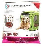 SportPet Pop Open Dog Crate