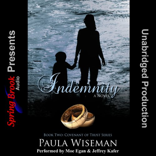 Indemnity audiobook cover art