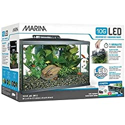 10 gallon aquarium kits