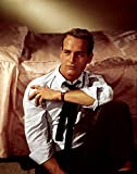 Posterazzi – Paul Newman In The Late 1950S Photo Print