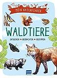 Mein Naturführer: Waldtiere: Beobachten · verstehen · schützen