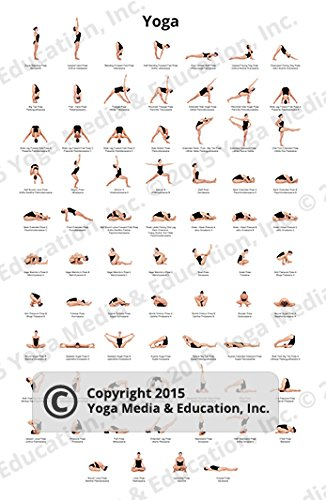 Poster Of Yoga Poses And Their Names Buy Online In Gambia Yoga Media Education Inc Products In Gambia See Prices Reviews And Free Delivery Over 3 500 D Desertcart