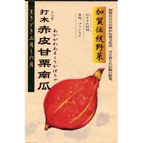かぼちゃ 種 【 打木赤皮甘栗南瓜 (あかがわあまくりかぼちゃ) 】 種子 小袋(約12ml)