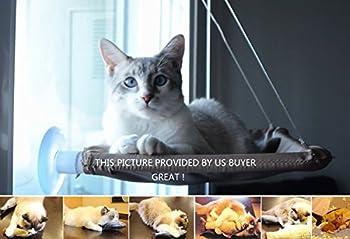 Hamac 20kg de chat Animal domestique Contactes fenêtre monté Hamac Perchoir Coussin de siège Lit étagère à suspendre Idéal pour plusieurs Chats amovible à la maison–55*35cm (Cadeau jouet Poisson)