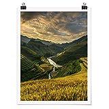 Bilderwelten Poster Galerie-Print Reisplantagen Vietnam