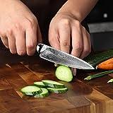 PAUDIN Damast Messer Allzweckmesser 13cm - scharfe Japanisches AU10 Küchenmesser mit ergonomischem Micarta-Griff - 6