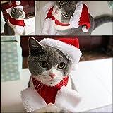 Namsan Katzen-Weihnachtsmütze Mit Schalldämpfer Hündchen Weihnachtsmütze, Rot -S