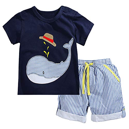 Fiream Little Boys' Cotton Clothing Short Baby Sets(2001TZ,3-4 Years)