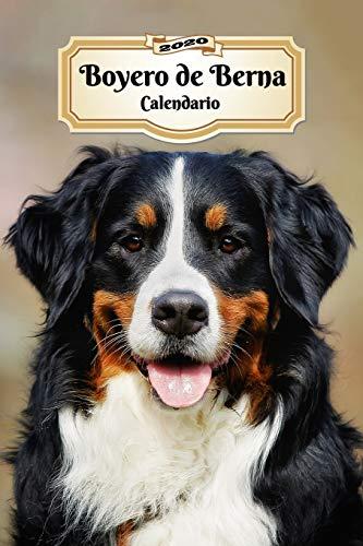 2020 Boyero de Berna Calendario: 107 Páginas   Tamaño A5   Planificador Semanal   12 Meses   1 Semana en 2 Páginas   Agenda Semana Vista   Tapa Blanda   Perro