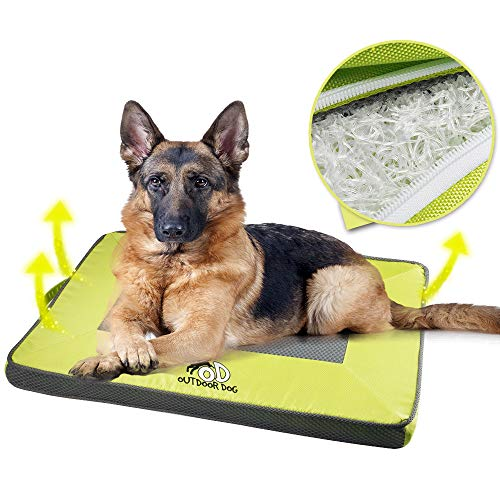 ALL FOR PAWS Pet Cool Mat