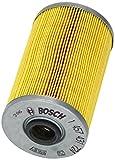 Bosch 1457431724 ELEMENTO FILTRANTE CARB REANULT: Master,Trafic