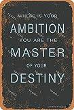 Cartel decorativo de metal con texto en inglés 'You Are The Master Of Your Destiny' de 20 x 30 cm, para decoración de pared, cocina, baño, granja, jardín, garaje, citas inspiradoras