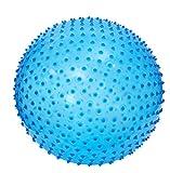 LUDI - Ballon de gymnastique bleu. Dès 2 ans. Plastique PVC épais, solide,...