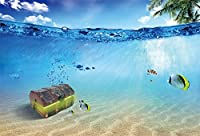 LFEEY 10x8フィート 海の下の木製宝物 チェストバックドロップ 海辺 浅い海水トロピカルフィッシュ 写真背景 子供 赤ちゃん ポートレート 写真撮影小道具 誕生日パーティーデコレーション