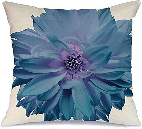 Throw Pillow Cover Funda de cojín, Flor aislada Cabeza Turquesa Dalia en Blanco Naturaleza Vibrante Objetos cosméticos dalias sin Belleza Funda de Almohada