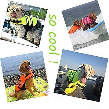 SILD Pet Life Jacket Taille réglable Chien Lifesaver Sécurité Gilet réfléchissant pour Animal Domestique Sauvetage Chien Saver Gilet de Sauvetage Manteau pour la Natation Surf Le Bateau la Chasse(XS)