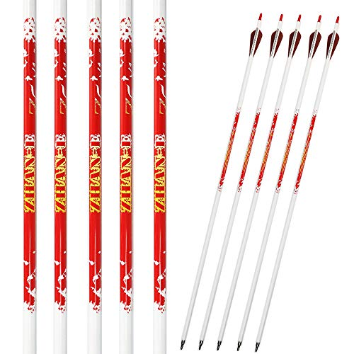 Zhan Yi 6 Pack Carbon Hunting Archery Arrows 340 Spine...