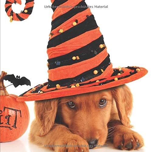 Halloween: Bereite dich auf die Apokalypse und den Weltuntergang vor ♦ das lustige, gruslige Buch zum selbst ausfüllen ♦ Dokumentiere die besten ... 8,5x8,5 Format ♦ Motiv: Halloween Hund