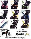 """Personalisierbares Hunde-Bandana """"Blind Dog"""", Weiß, modisches Halstuch, verhindert Unfälle durch Vorwarnen anderer vor Ihrem Hund - 6"""