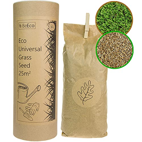 BeEco Öko-Grassamen | Universelle Mischung Rasensamen Schnellkeimend 25m² | Perfekt für die Rasen Nachsaat | 100{e531c53d65c0058b84d7f174aad046731f24f8009dc3c1c066fbc62c6a979fd7} Recyclebar in Einer Pappröhre | Grassamen ohne Pestizide angebaut