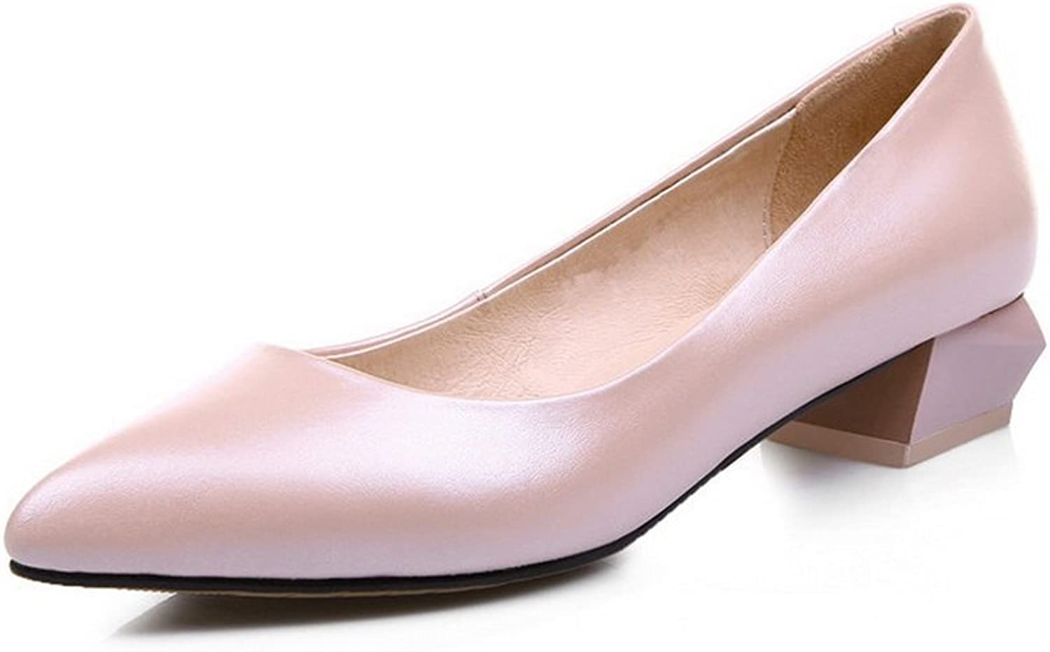 AdeeSu Womens Comfort Pointed-Toe Business Pleather Pumps shoes SDC04335