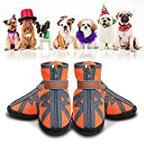 CADO SHY Dog Booties for Small Dogs, Dog Shoes for Small Dogs Hot Pavement, Dog Summer Hiking Boots for Anti-Slip, Heat Protection, Breathable Material (Size: 1: 1.10'x2.79'(LW) for 0-6 lbs, Orange)