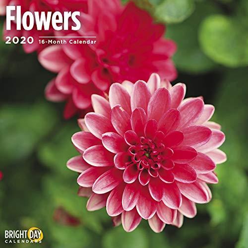 Flowers Wall Calendar 2020