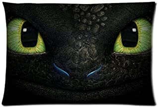 Girls Boys Pillowcases Pillows Covers Cases Bedroom Decor How to Train Your Dragon Night Fury Face Decoration Rectangle Two Sides Printed 20x30 Hotel,Cafe,Car,Sofa Throw Pillow Case Cushion Cover