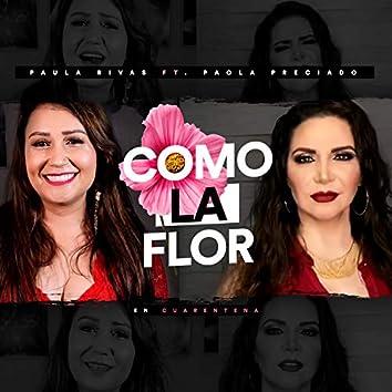 Como la Flor (En Cuarentena)
