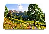 26cmx21cm マウスパッド (スイス山アルプスの道夏) パターンカスタムの マウスパッド
