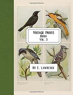 Vintage Prints: Birds: Vol. 3