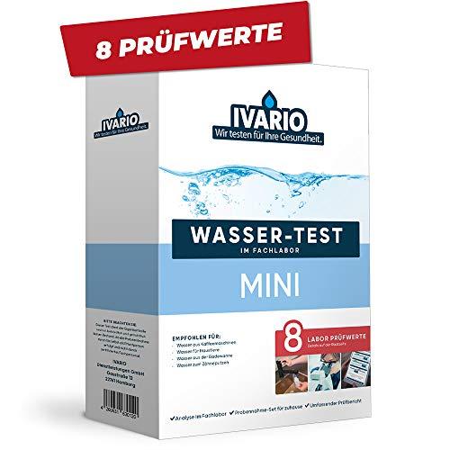 Invario Basis-Test (8 Werte)