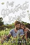 My Steadfast Knight: A First Love Sweet Romance Novel (Lyrics of Love Book 9)